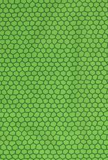 Katoen - Tortue Vert