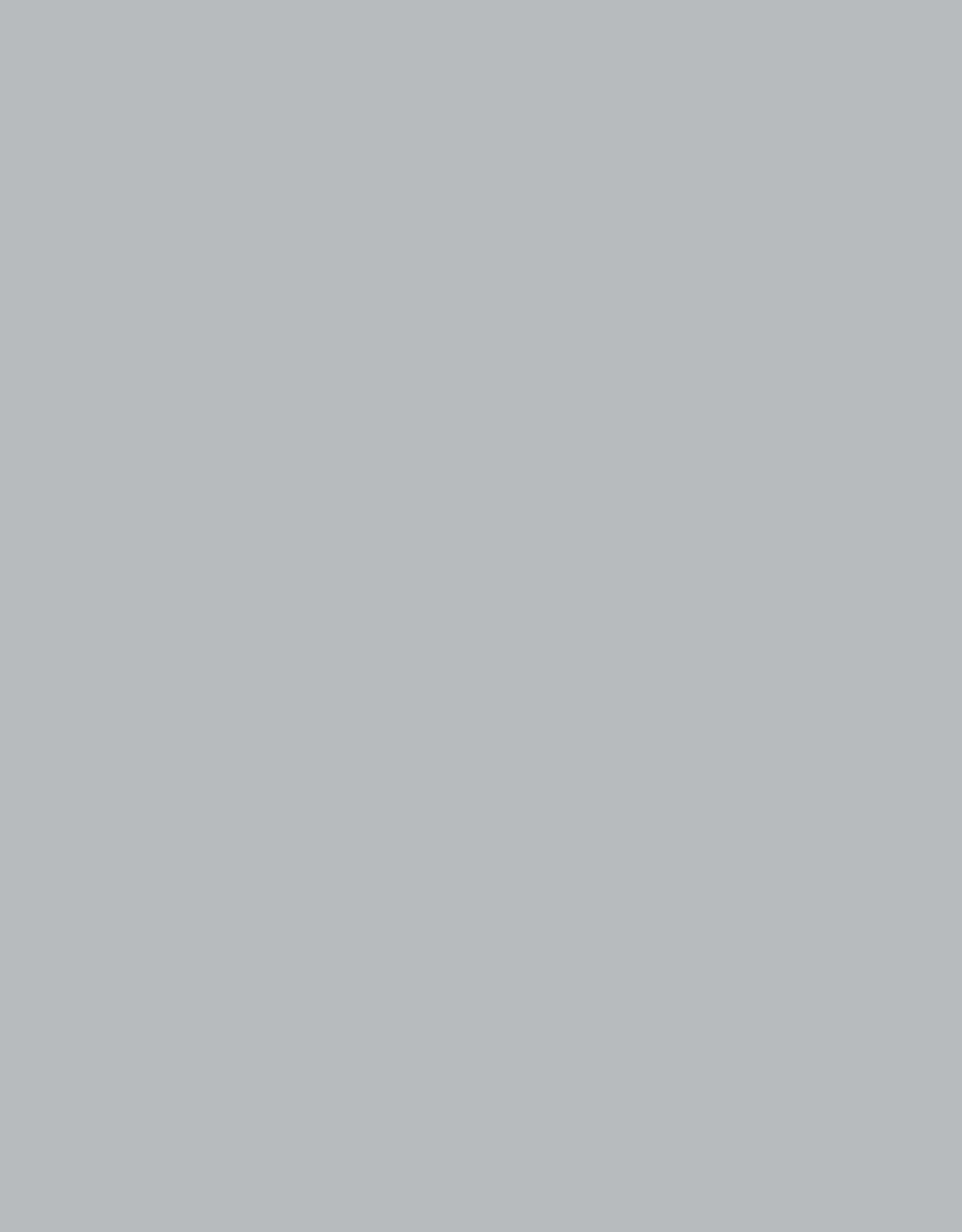 Paspel - Midi Grijs