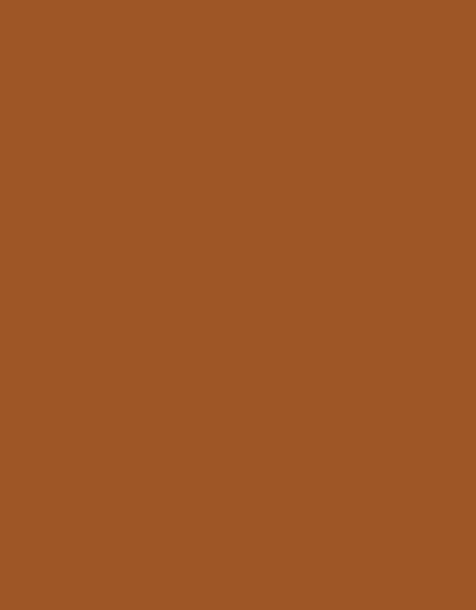 Paspel Elastisch - Bruin