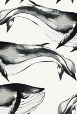 Tricot - Digi Whales