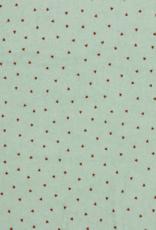 Spons - Triangle Mint