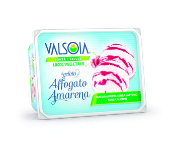 Valsoia Ice cream box Cream and Sour Cherry (6 boxes)