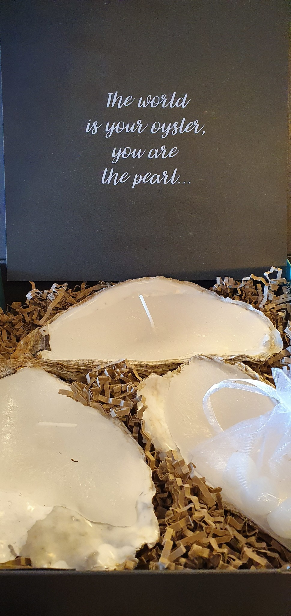 Uneven Large 3 Oyster Candle Natural + Perfumed Pearls