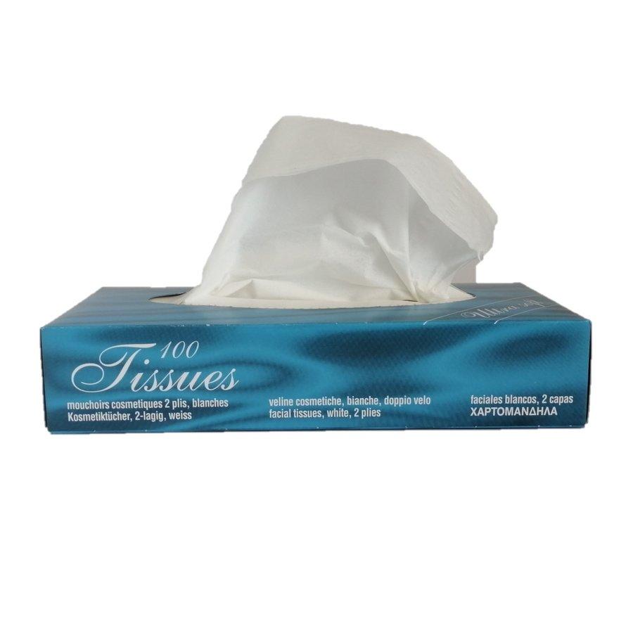 Tissue doekjes 100 stuks-1