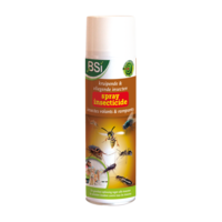 Insecticide spray 500ml