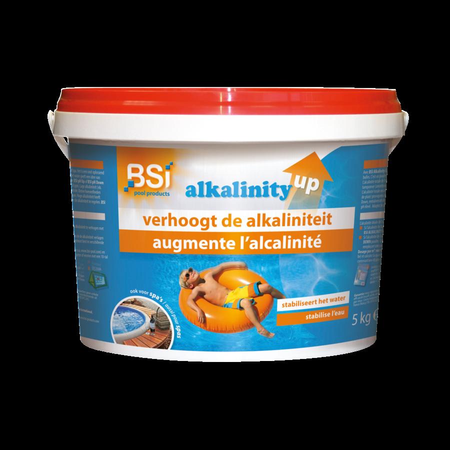 Alkalinity up 5kg-1