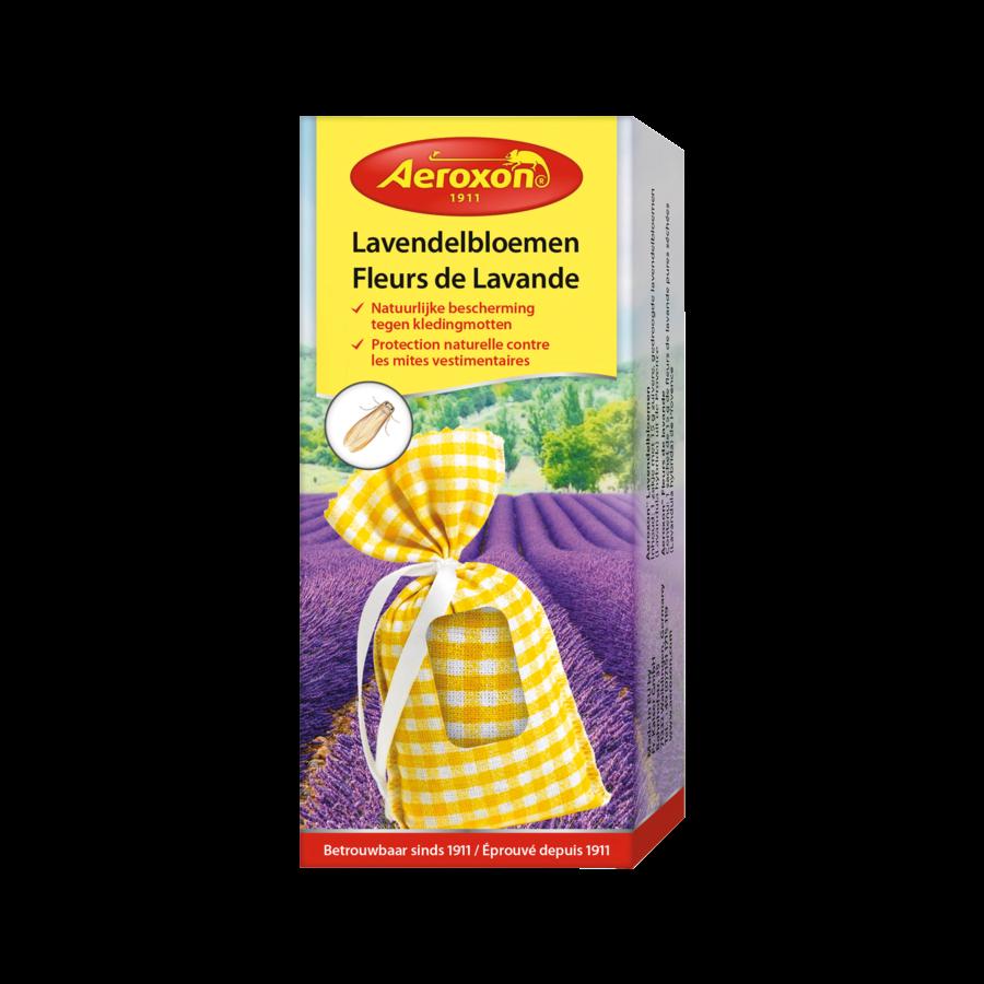 Lavendelbloemen-1