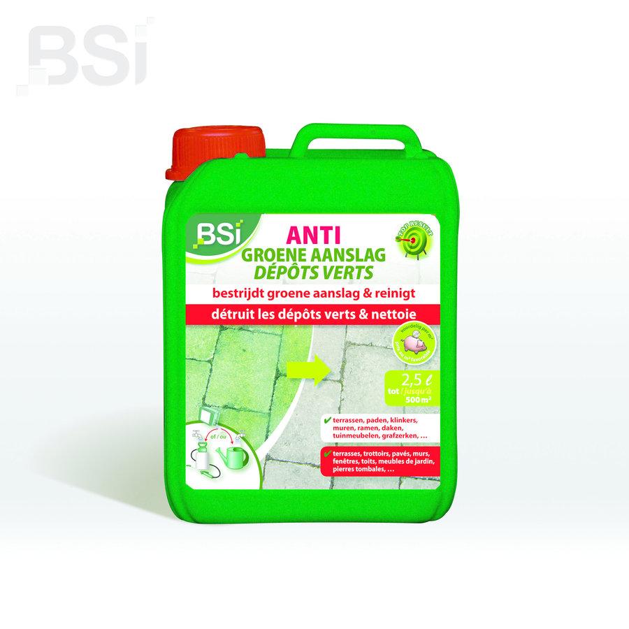 Anti-groene aanslag concentraat-2