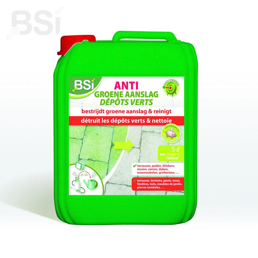 Anti-groene aanslag concentraat-3