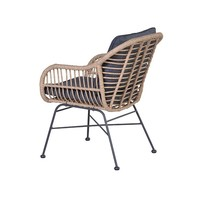 thumb-Dining fauteuil Margriet-3