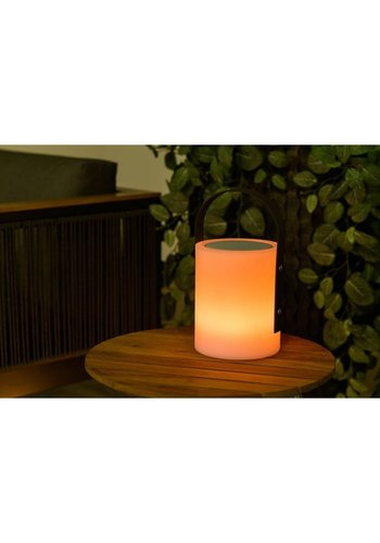 Garden Impressions in-&outdoor moodlight & sound