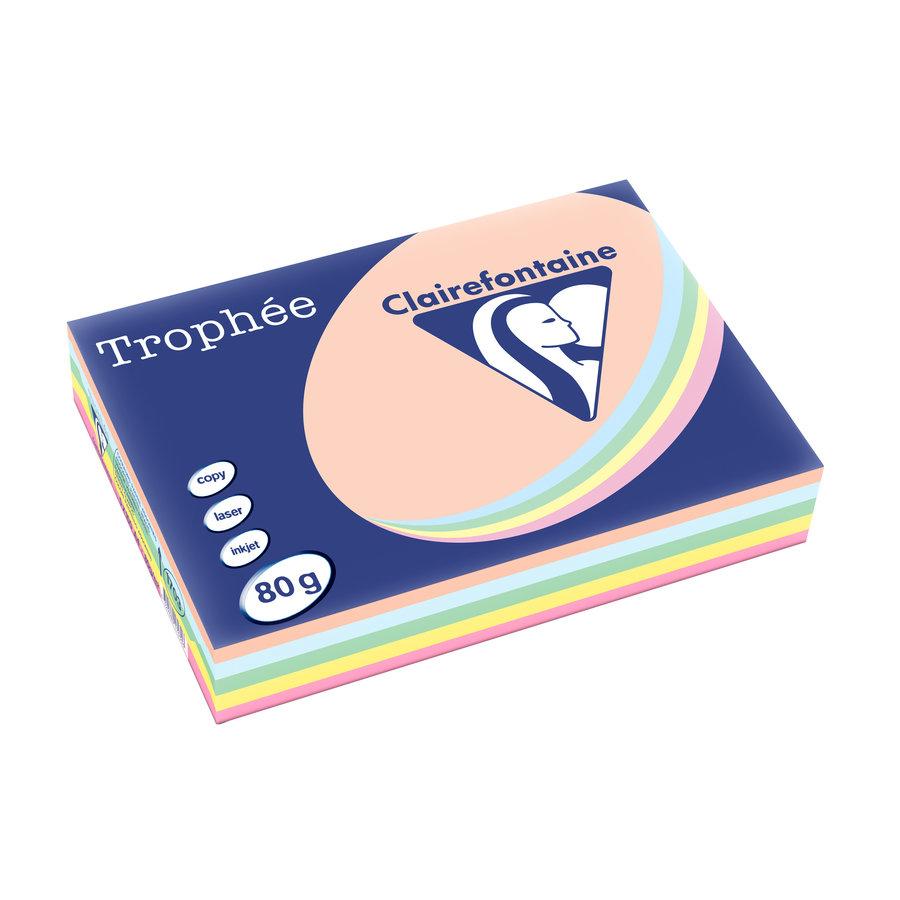 Trophée papier, pastelkleuren, A4, 80g, 5x100-1