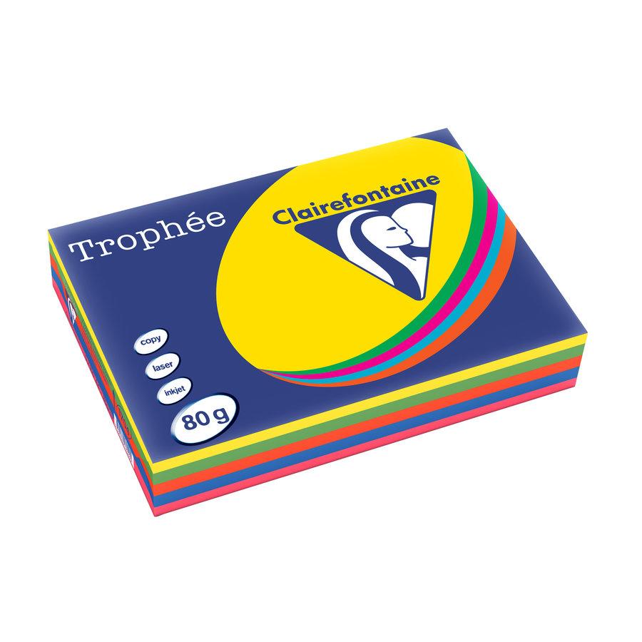 Trophée papier, intense kleuren, A4, 80g, 5x100-1