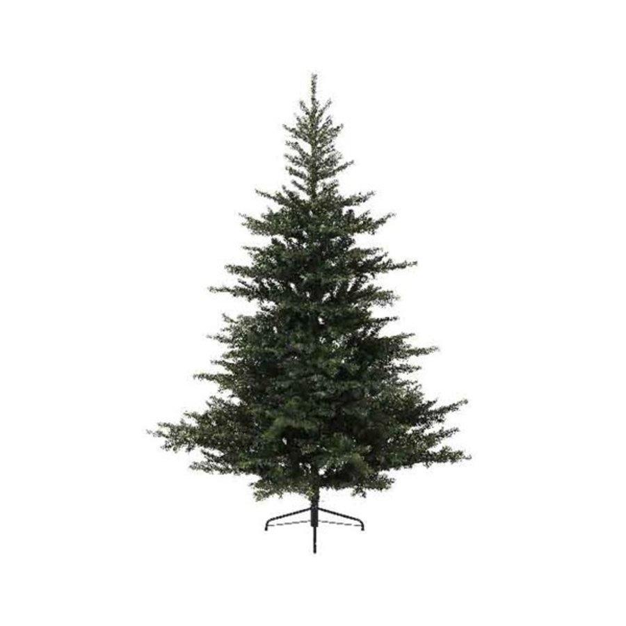 Kerstboom Grandis fir 150cm-1
