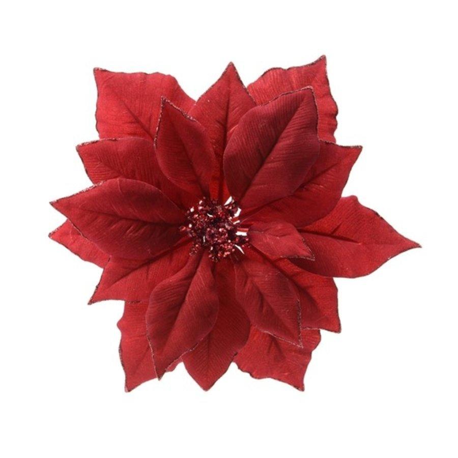 Poinsettia op clip, kerstrood-1