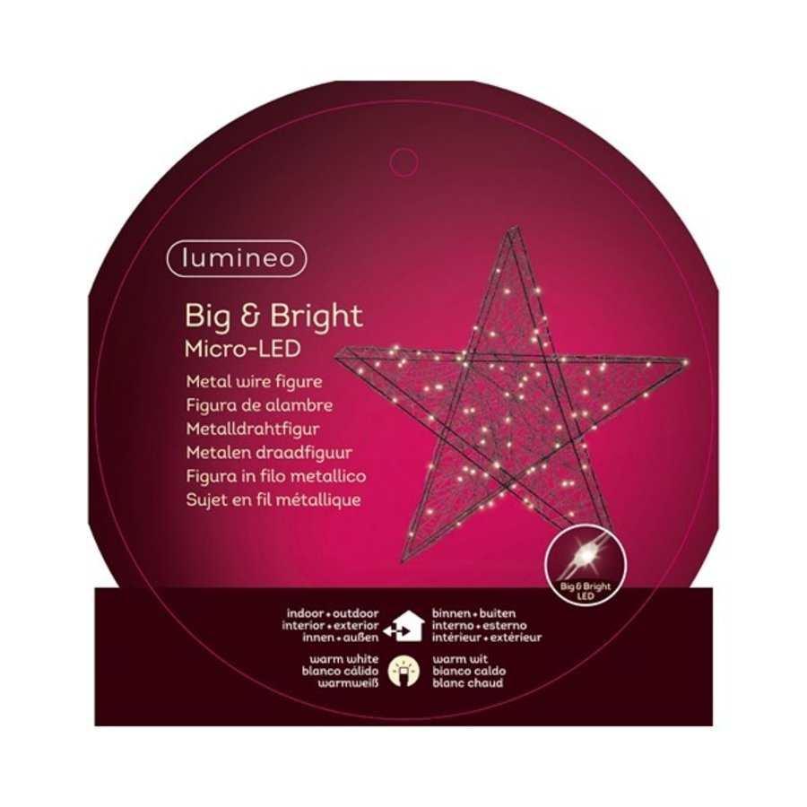 Micro LED ster 58cm 80L warmwit-2