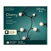 Lumineo LED cherry lights - black cable - Warm Wit