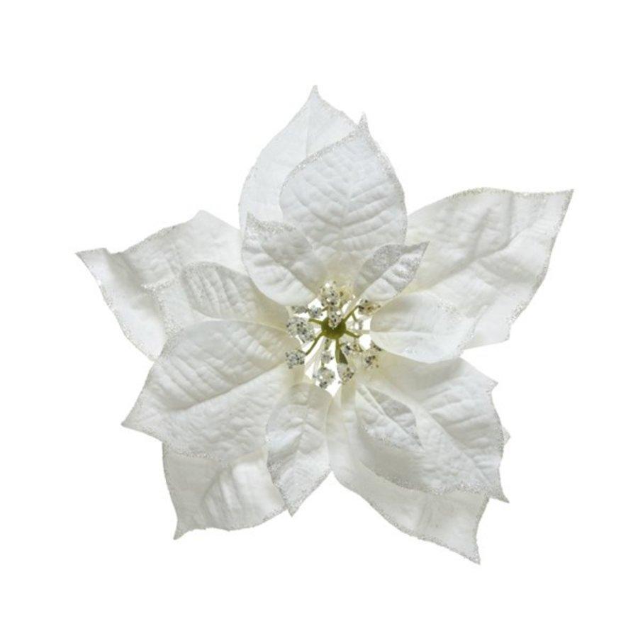 Poinsettia wit op clip 24cm-1