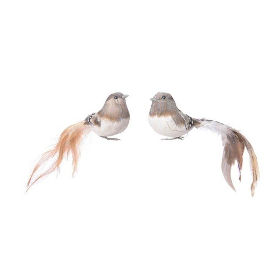 Vogel veren lange staart 6x18x5cm 2ass-1