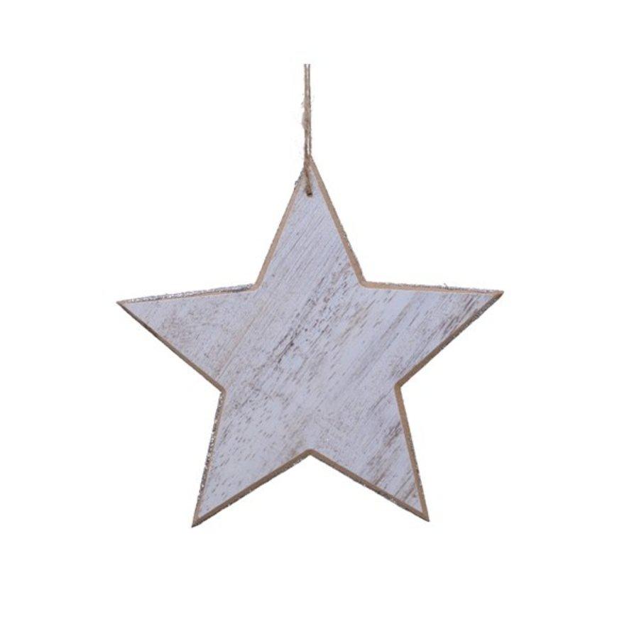 Ster met hanger 20cm-1