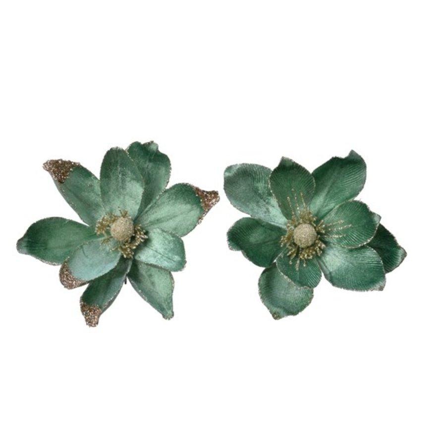 Magnolia op clip, 20cm, saliegroen-1