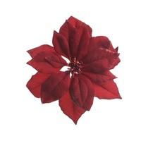 Poinsettia op clip, bordeaux
