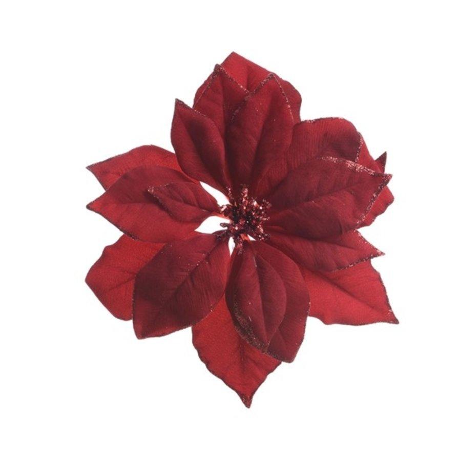 Poinsettia op clip, bordeaux-1