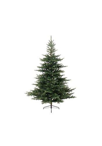 Everlands Kerstboom Grandis fir 240cm