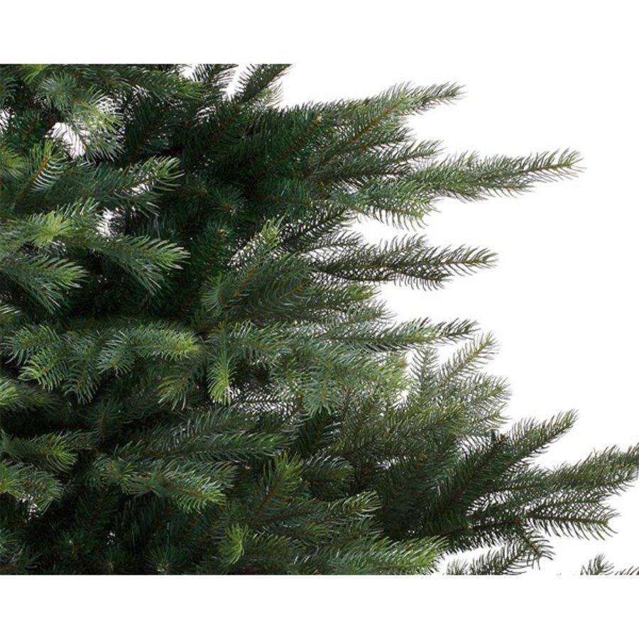 Kerstboom Grandis fir 240cm-2