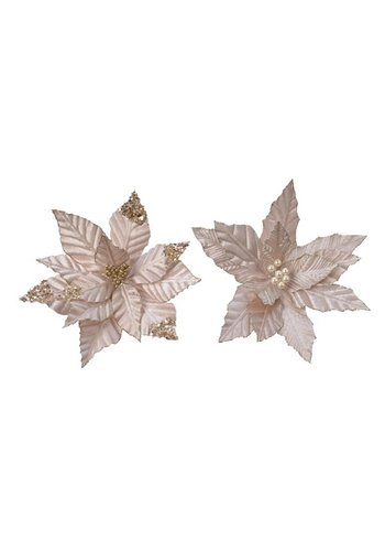 Decoris Poinsettia op clip, polyester, champagne