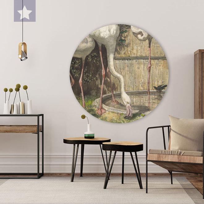 Wall circle Flamingo