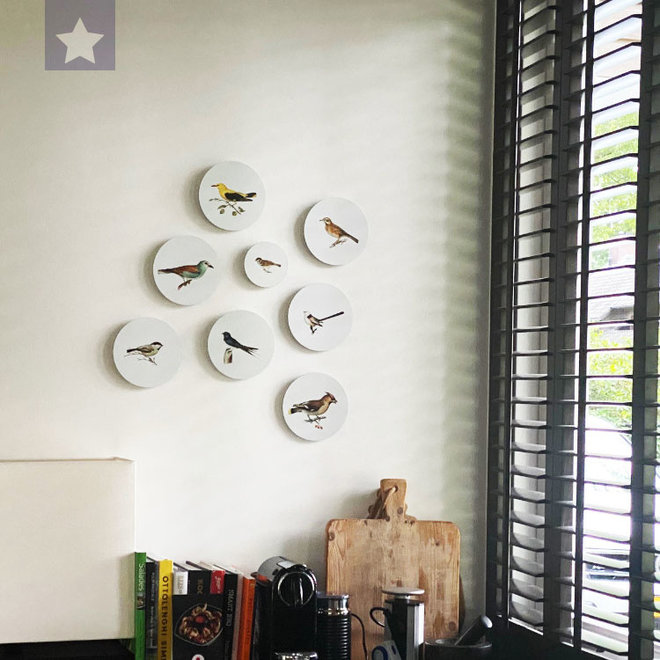 Boeren zwaluw | dibond wall plate 15x15cm