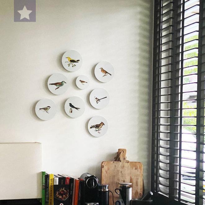 Pestvogel | dibond muurbord 15x15cm