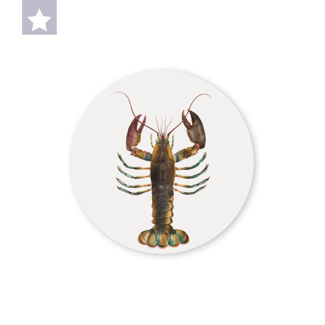 Lobster | dibond wall plate 15x15cm