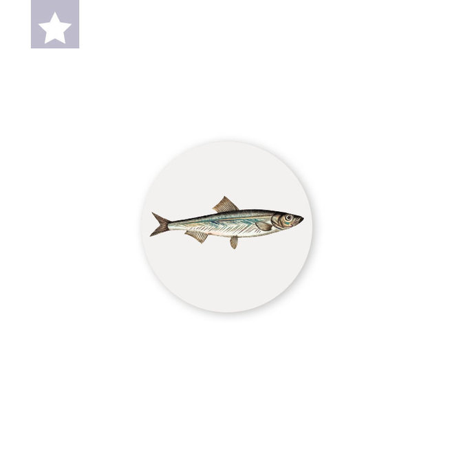Sardine | dibond wall plate 10x10cm