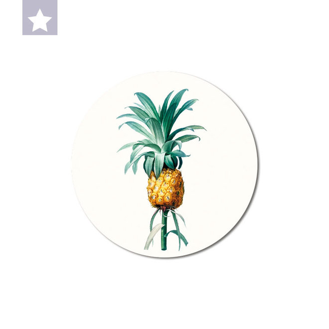 Ananas | dibond muurbord 15x15cm