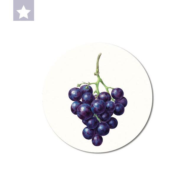 Blue grape| dibond wall plate 15x15cm
