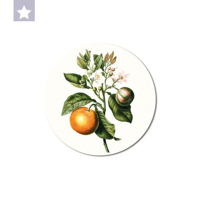Orange   dibond wall plate 15x15cm