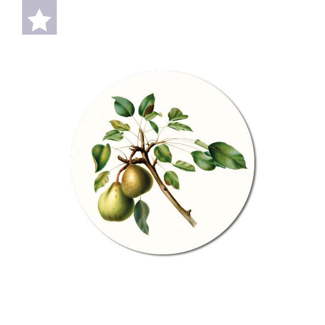 Pear | dibond wall plate 15x15cm