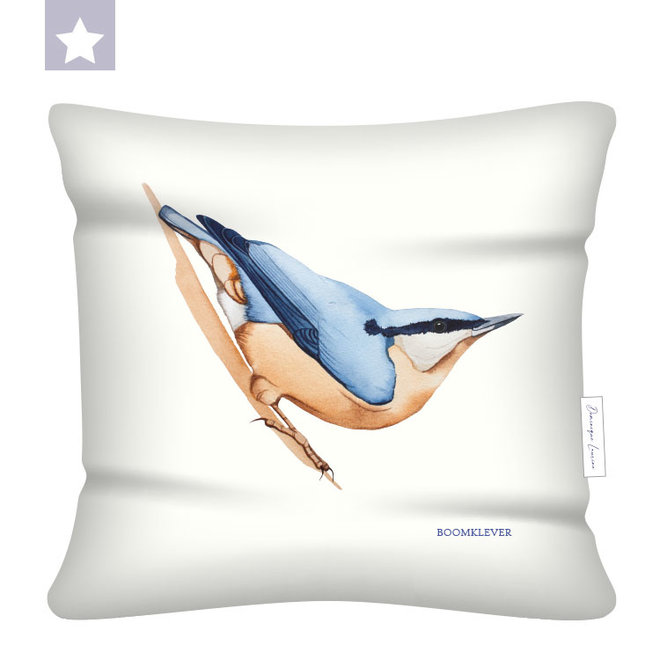Pillow Nuthatch