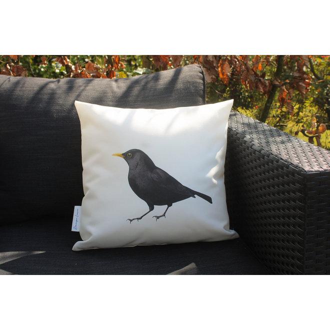 Pillow  Hedge sparrow