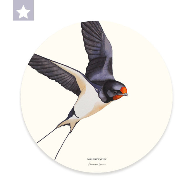 Wall circle Barn Swallow / Ø 30cm
