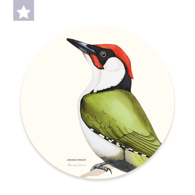 Wall circle Green Woodpecker