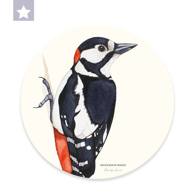 Wall circle Great Spotted Woodpecker / Ø 30cm