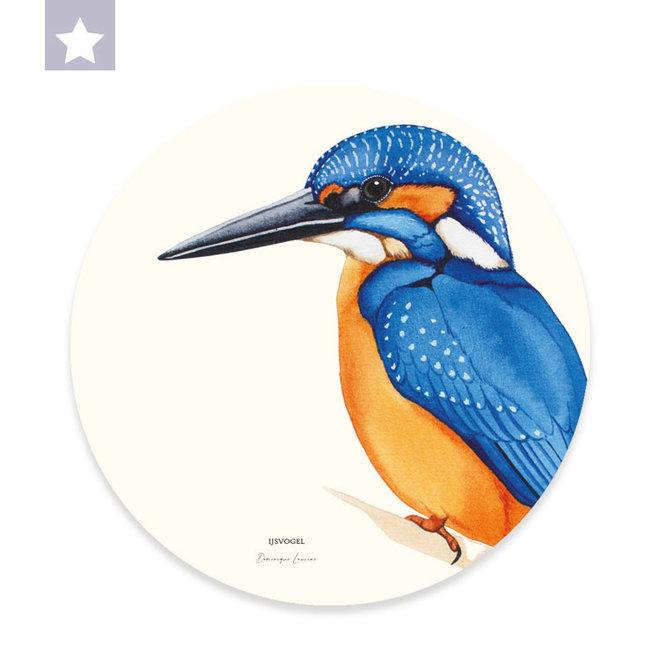 Wall circle  kingfisher