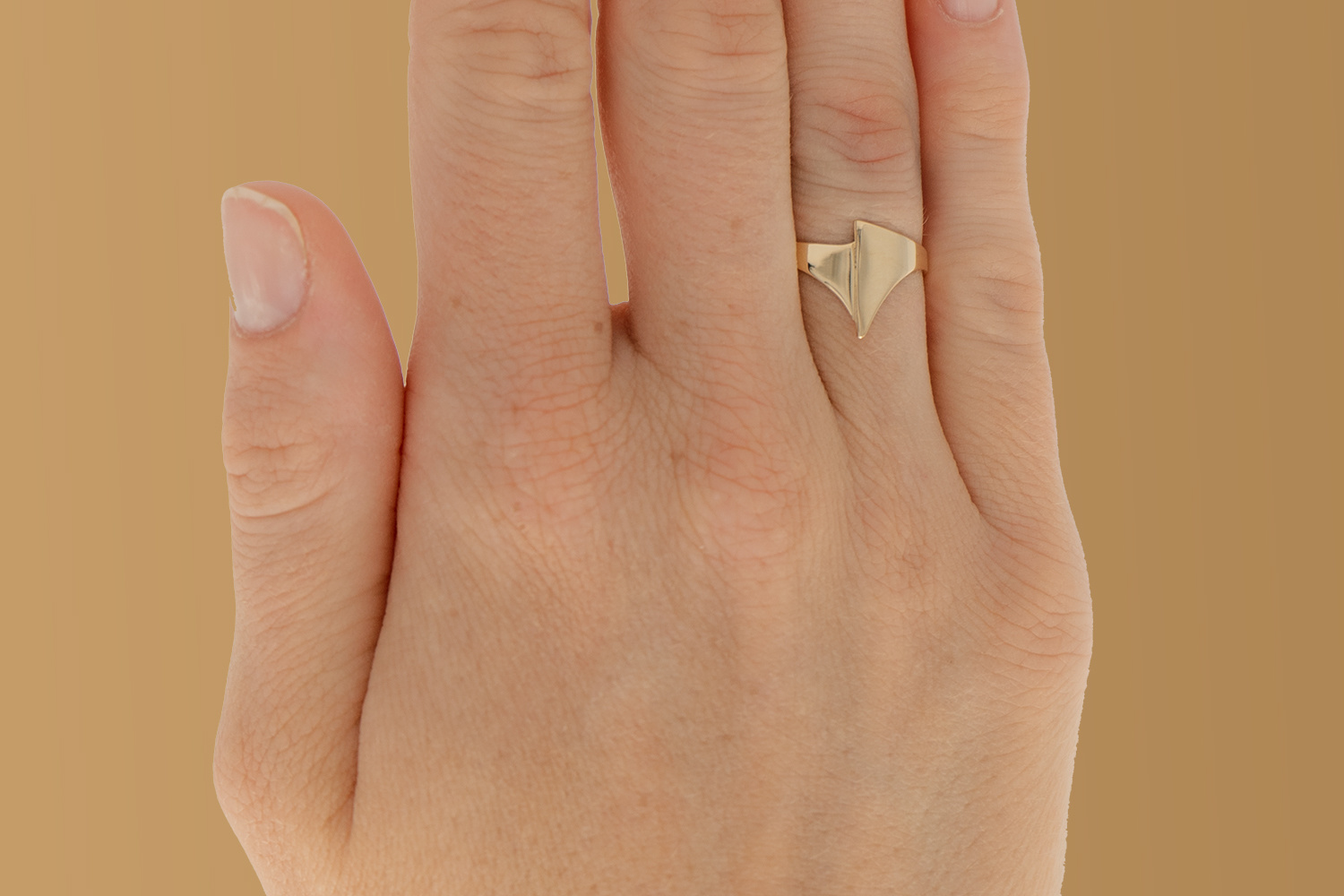 Geelgouden ring small - Archi-2