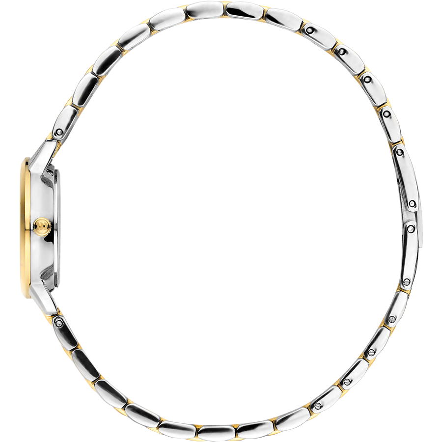 Danish Design - Horloge Dames - Akilia Mini Link Two-Tone - IV90Q1268-4