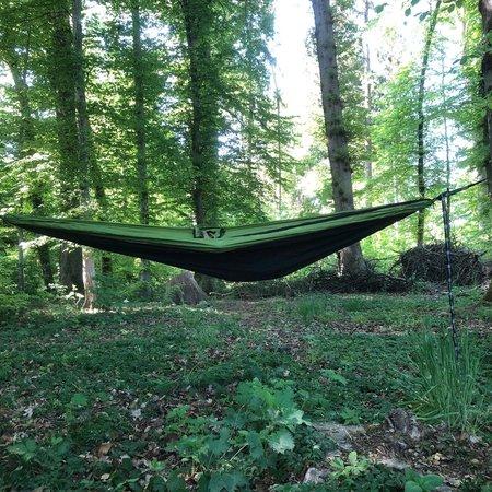Hamac Jungle Od Green