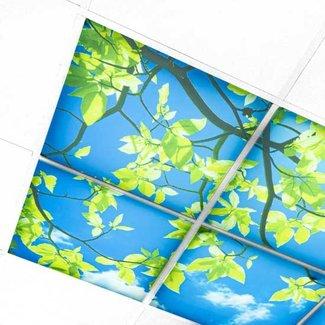 PURPL Wolkenplafond LED - Acrylplaat 3mm
