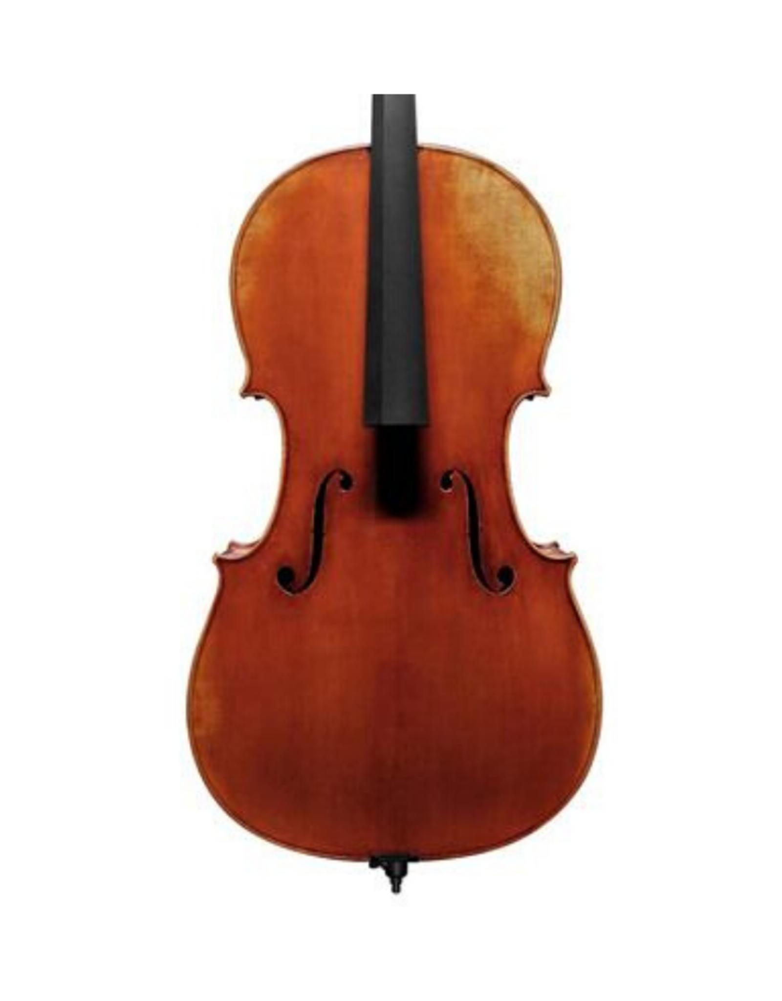 Cello 7/8, geselecteerd sparren en mooi gevlamd esdoorn, gepatineerde lak, 'Stainer model'